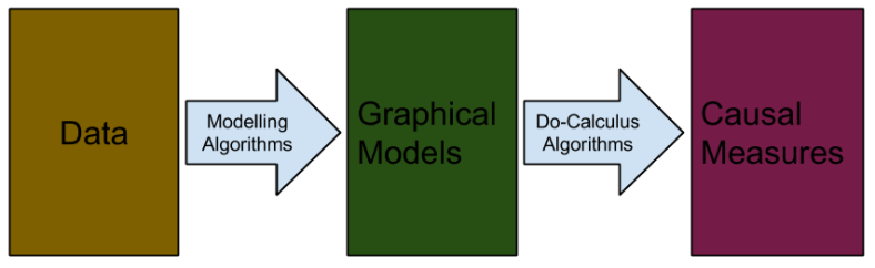 Causal Models- Overview