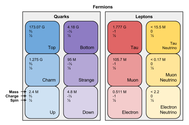 Fermions- Three Generations