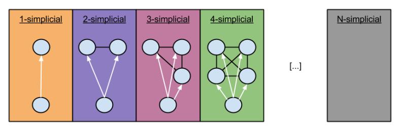 EE512 Generalizing Trees- N-simplicials