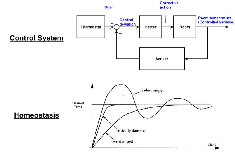 Cybernetics- Homeostasis (1)