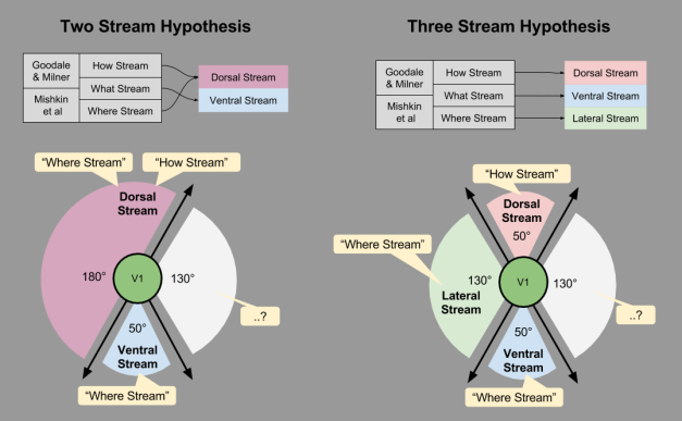 Three Streams- Fractionating Streams (4)