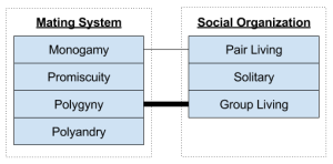 Primate Societies- Mating System vs Organization (1)
