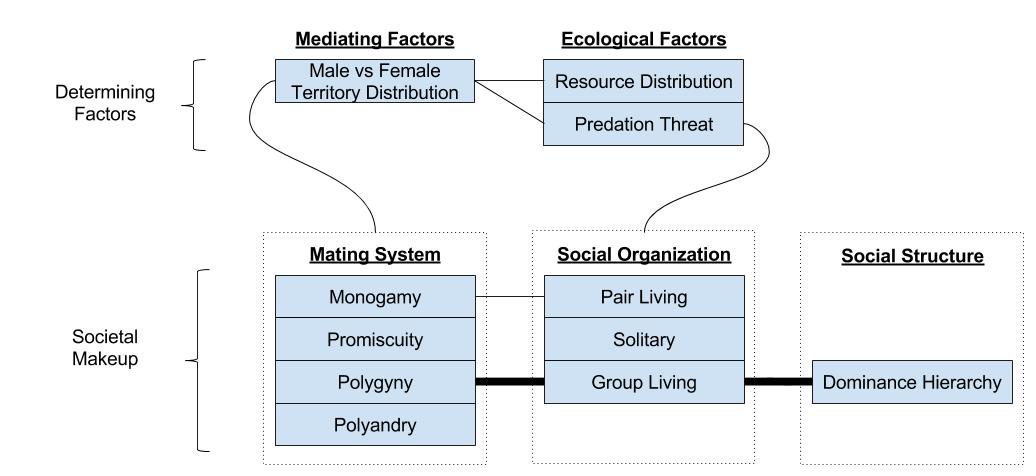 Primate Societies- Systemic View (4)