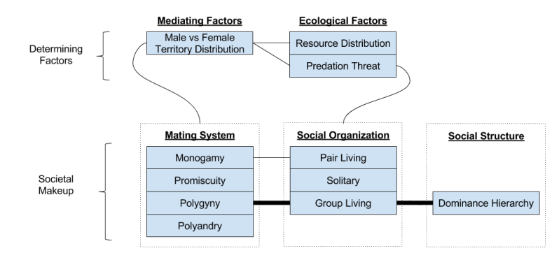 Primate Societies- Systemic View (4)