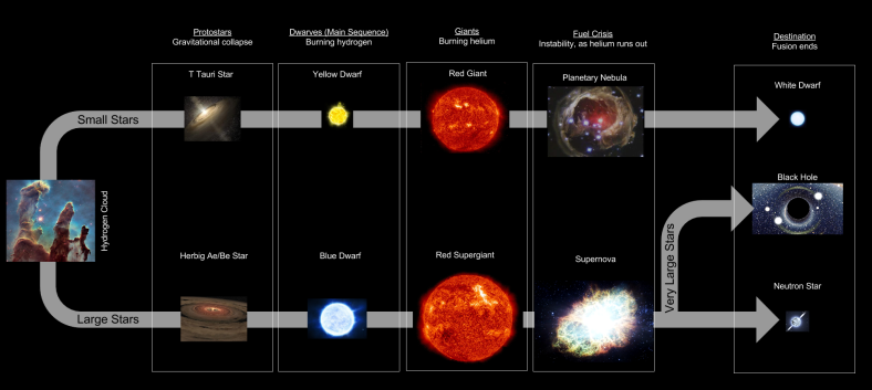 Stellar Evolution- Lifecycle Flowchart (1)
