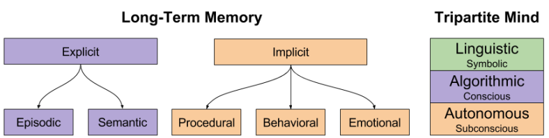 CLS- Categories of Long-Term Memory (1)