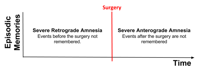 CLS- HM Amnesia Pattern v2 (2)