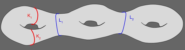 Isotopy_ Genus 3 Torus (1)