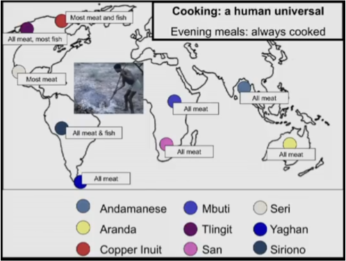 Cooking_ A Human Universal (1)