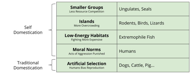 Self-Domestication_ Categories of Aggression Reduction (1)